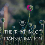THE RHYTHM OF TRANSFORMATION [Text]